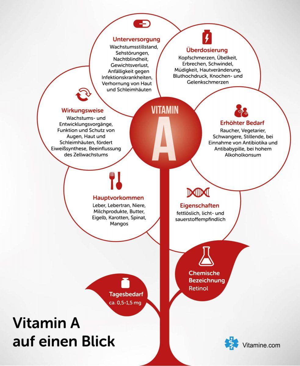 Vitamin A Infografik