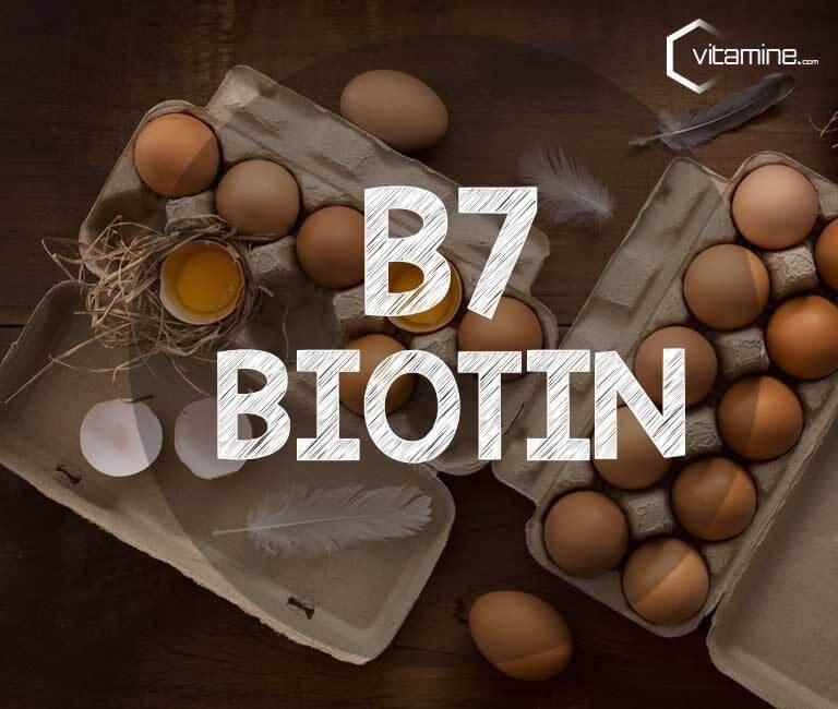 Biotin - alle Infos