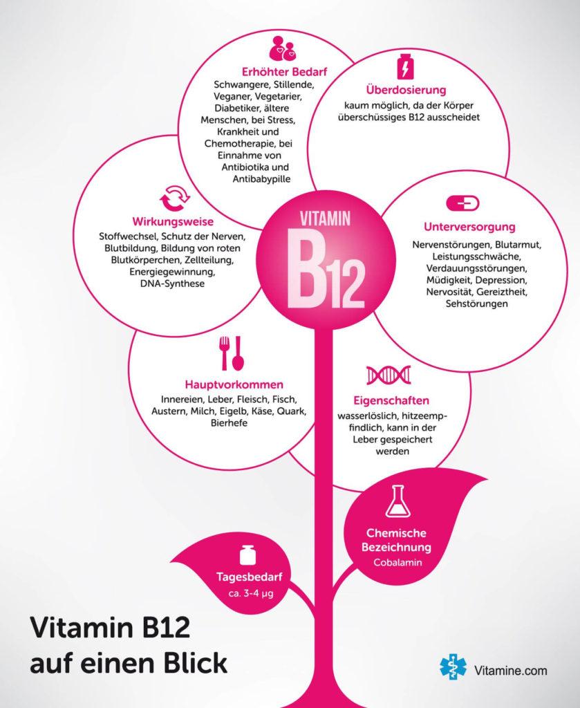 Infografik Vitamin B12