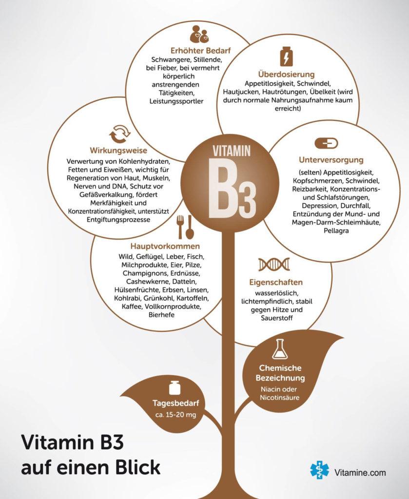Infografik Vitamin B3 / Niacin