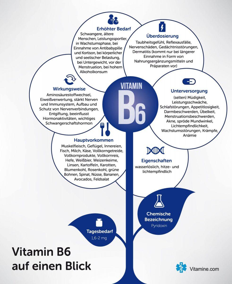 vitamin-b6-infografik