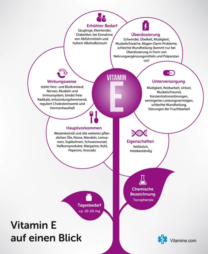 Infografik Vitamin E