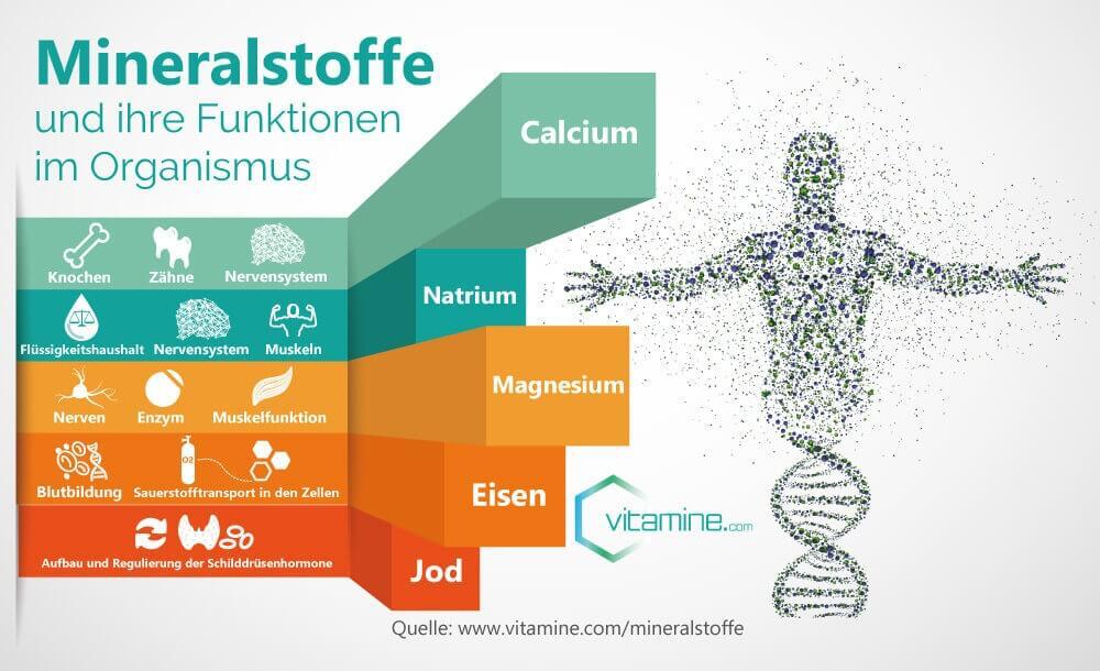 Mineralstoffe und Funktion im Körper