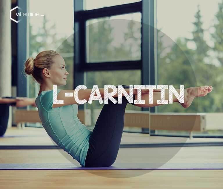 L-Carnitin - Der Stoff für den Fettstoffwechsel
