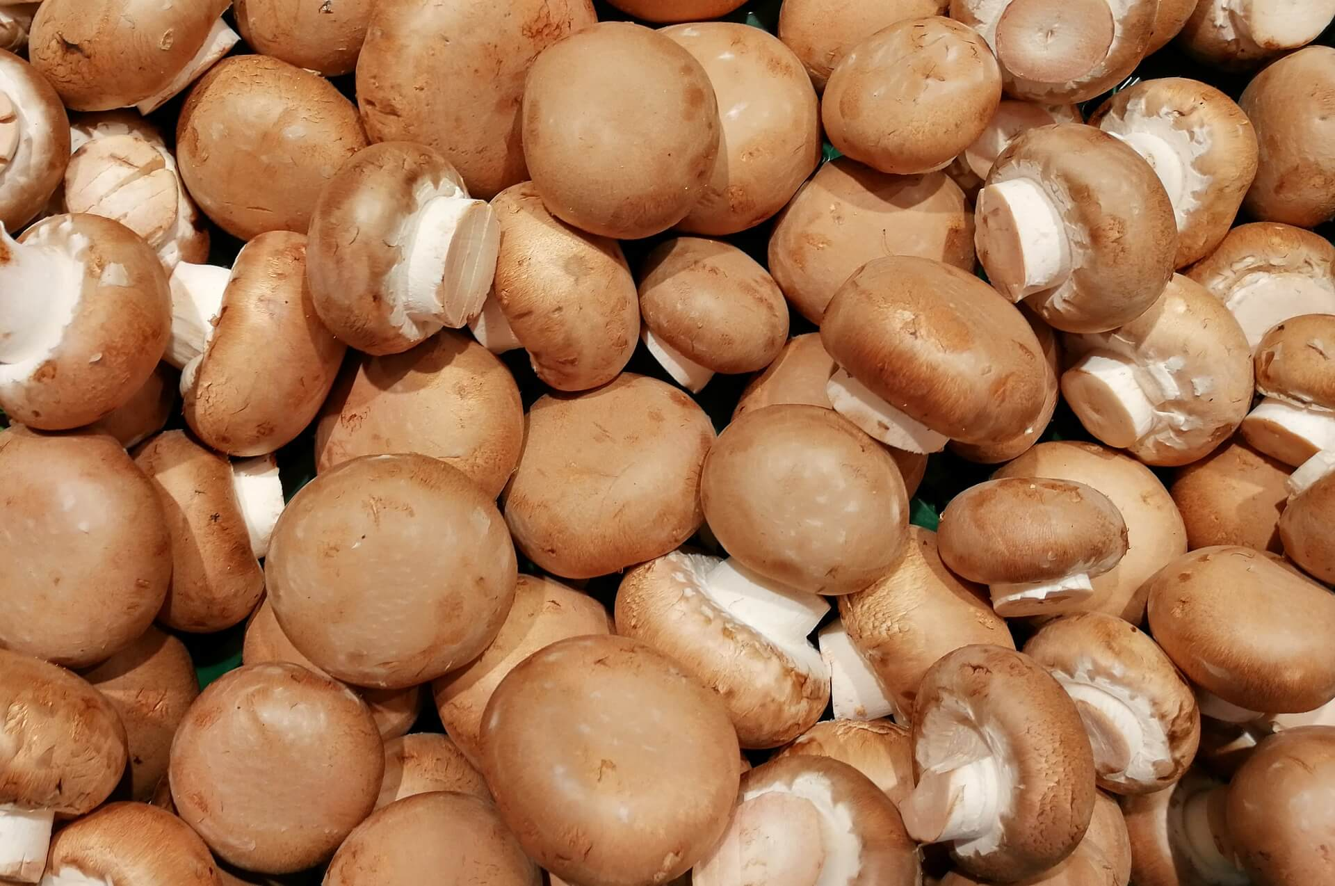 Welche Vitamine stecken in Champignons?