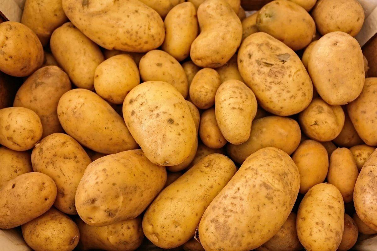 Kartoffel Vitamine