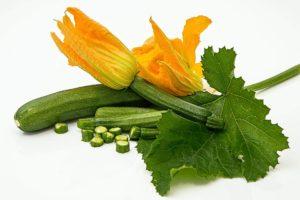 Zucchini-Lebensmittel