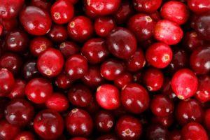 Cranberry als Superfood